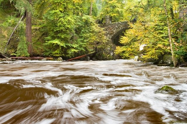 My next Weekend Waterfall workshop at the Dunkeld Hermitage is on Saturday! If you're looking to end the week with some exploration, nature and improve your photography at the same time book a place now for £40.  http://ow.ly/Qz4z50pElib