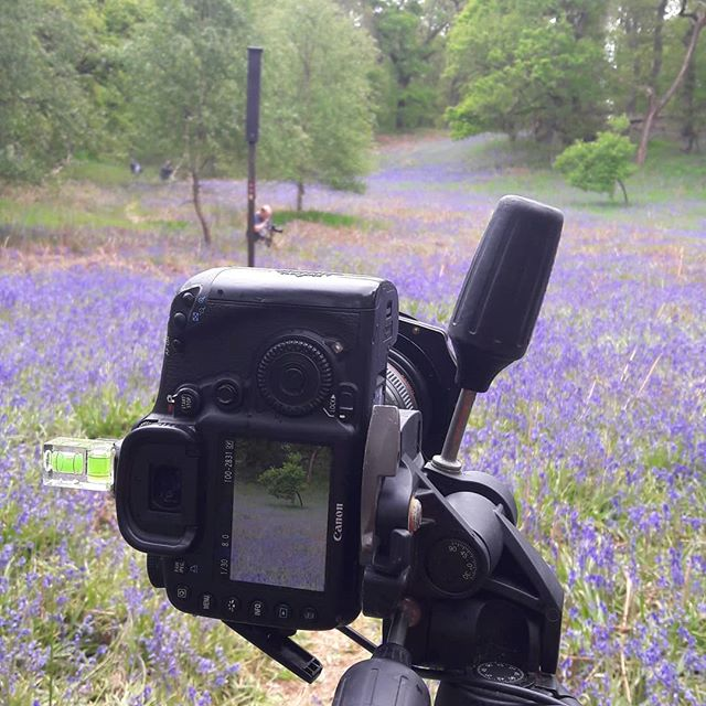 This what it's all about! On a private workahop today in Kinclaven Woods with Motherwell Camera club!