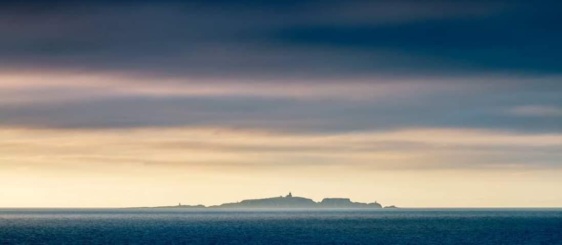 Isle of May.jpg