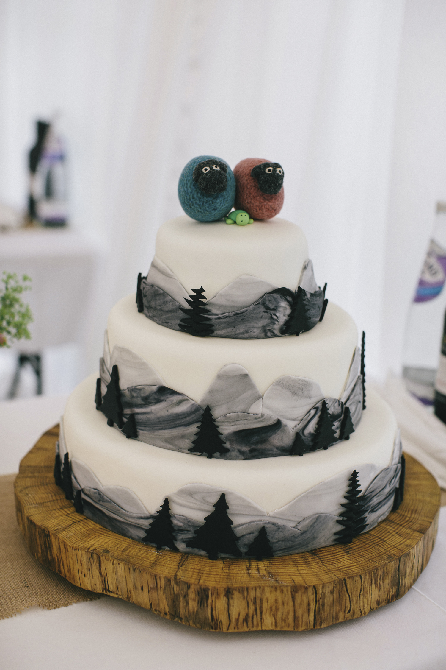 Alternative_wedding_photographer_scotland_borders_mabie_forest-17.jpg