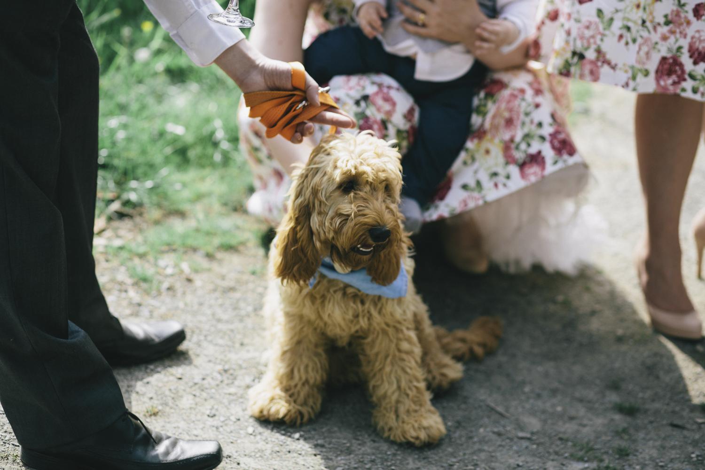 Alternative_wedding_photographer_scotland_borders_mabie_forest-49.jpg