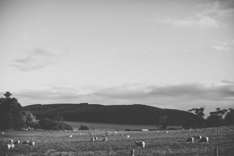 Alternative_wedding_photographer_Scotland_Highlands-27.jpg