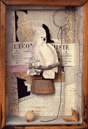 A Parrot for Juan Gris, Joseph Cornell