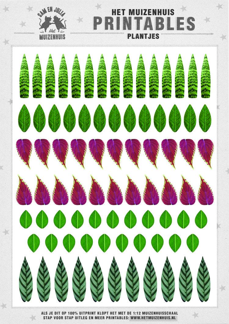 MH+printable+plantjes.jpg