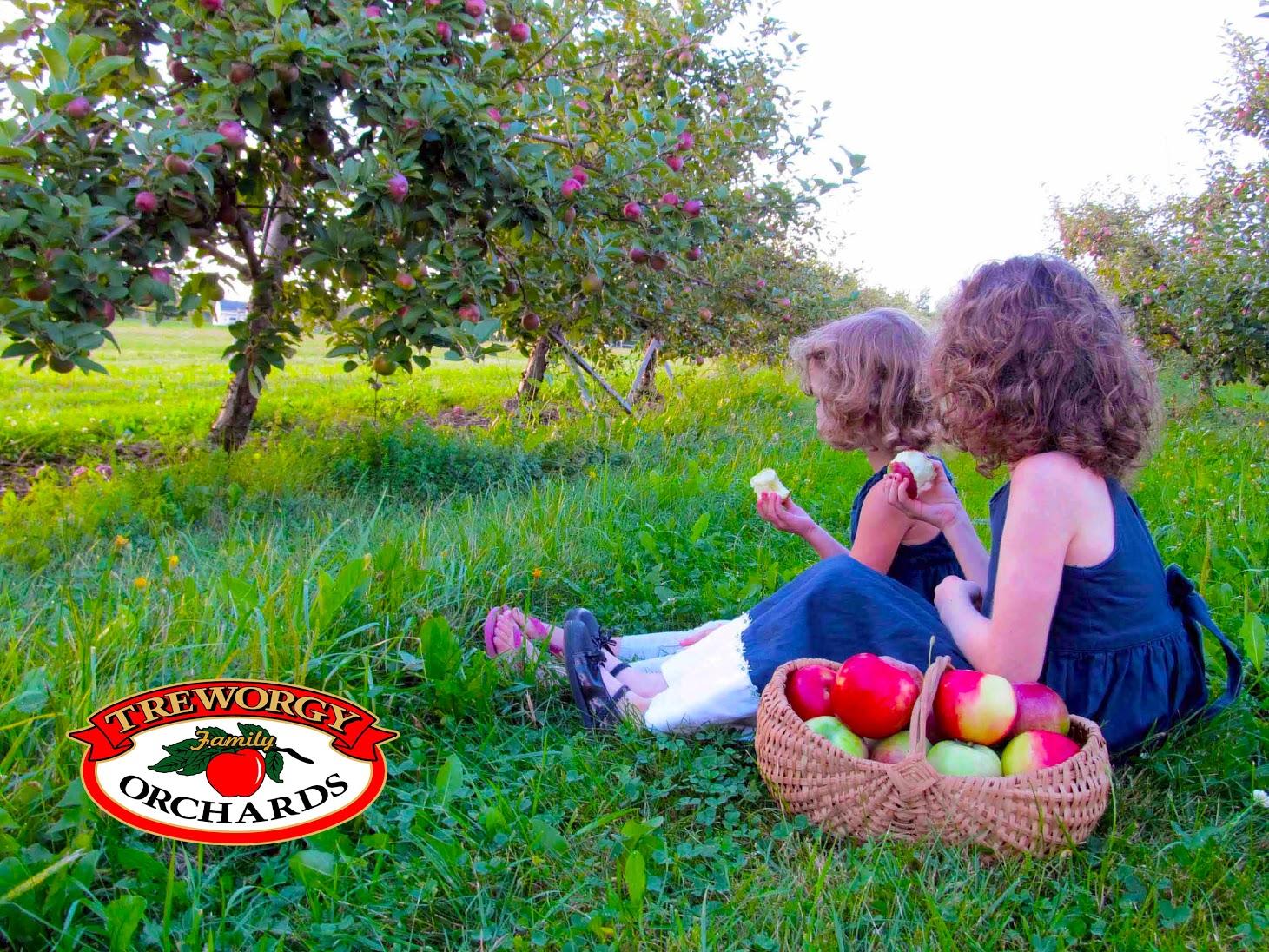 Girls in Apple Orchard Logo.jpg