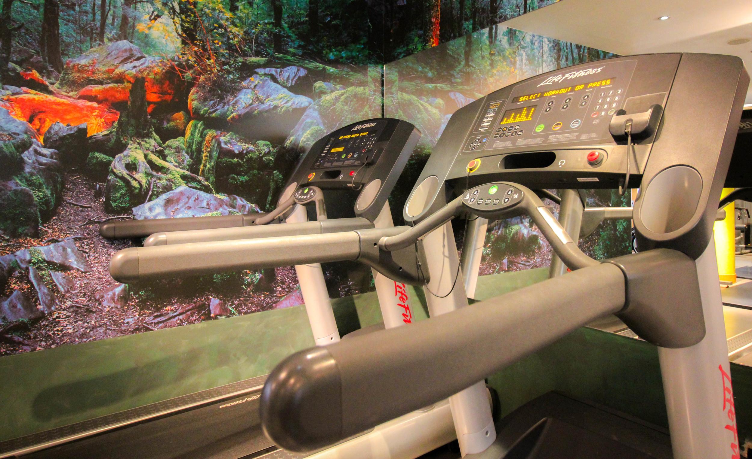 Fybre_Treadmill.jpg