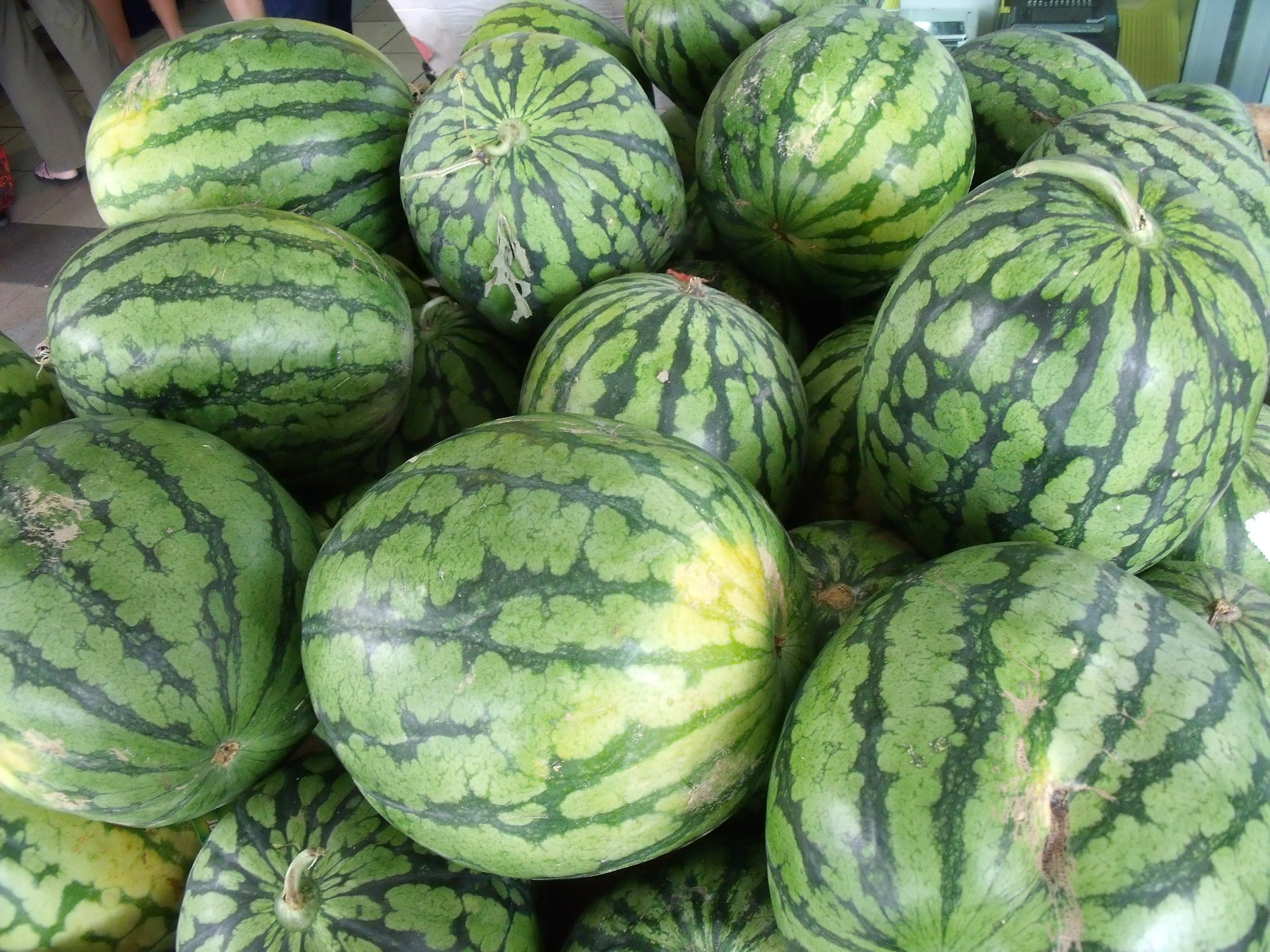 Singapore_watermelons.jpg