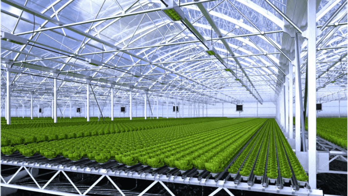 Combagroup raised CHF6.5m from Capagro, Aliad & private investors - July 2017