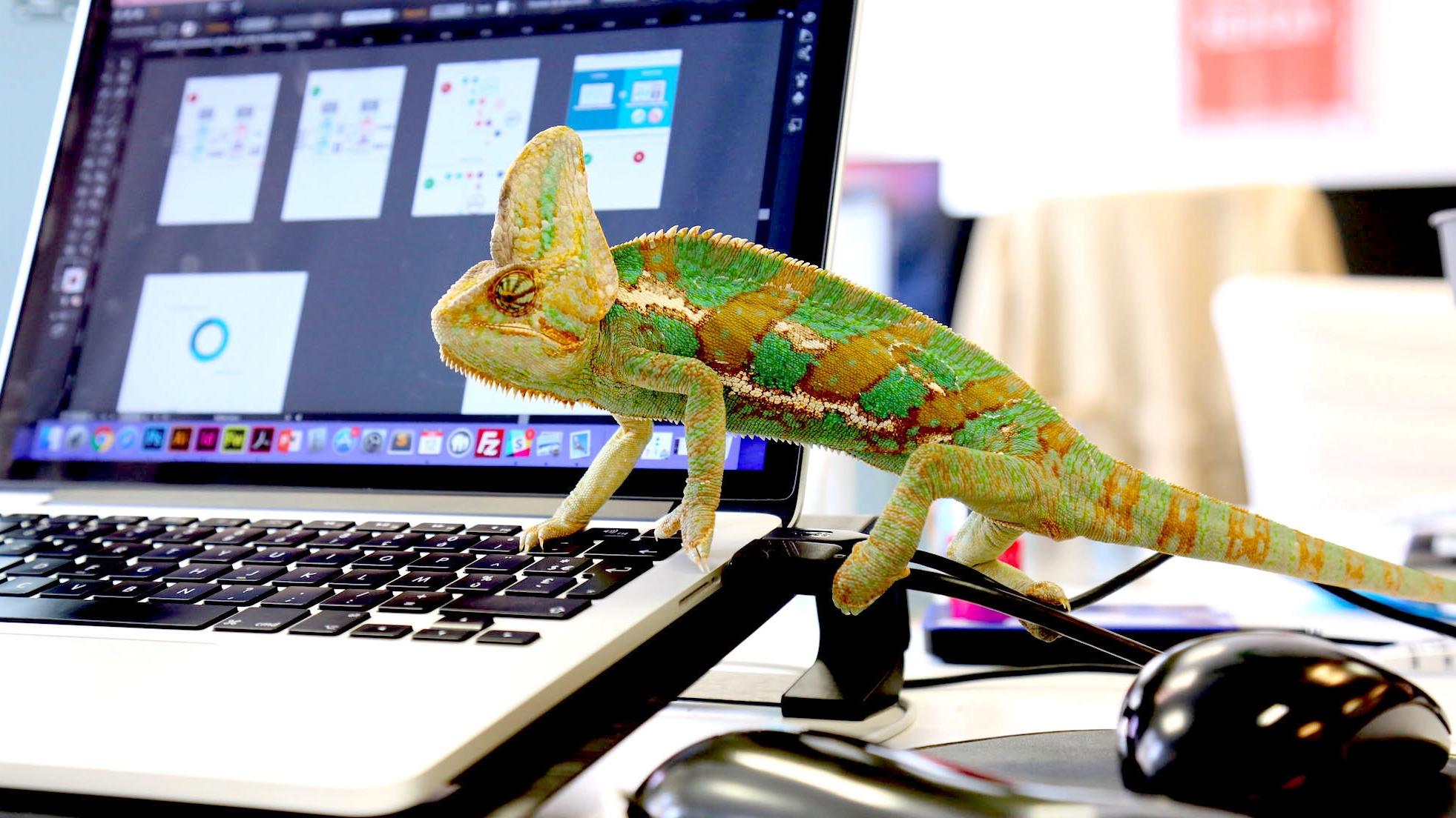 Kameleoon raised €2m from SGPA - November 2015