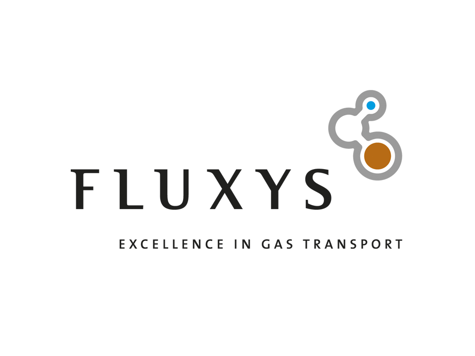 fluxys logo.jpg