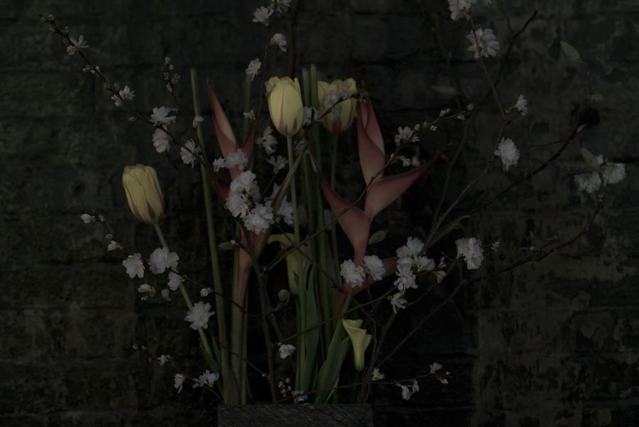 15-02-10-Eisenstein_0009.jpg