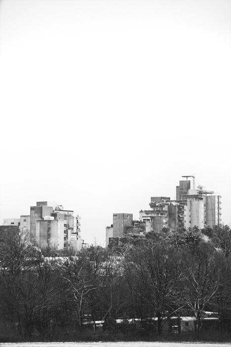 14-12-26-Wald_0071.jpg