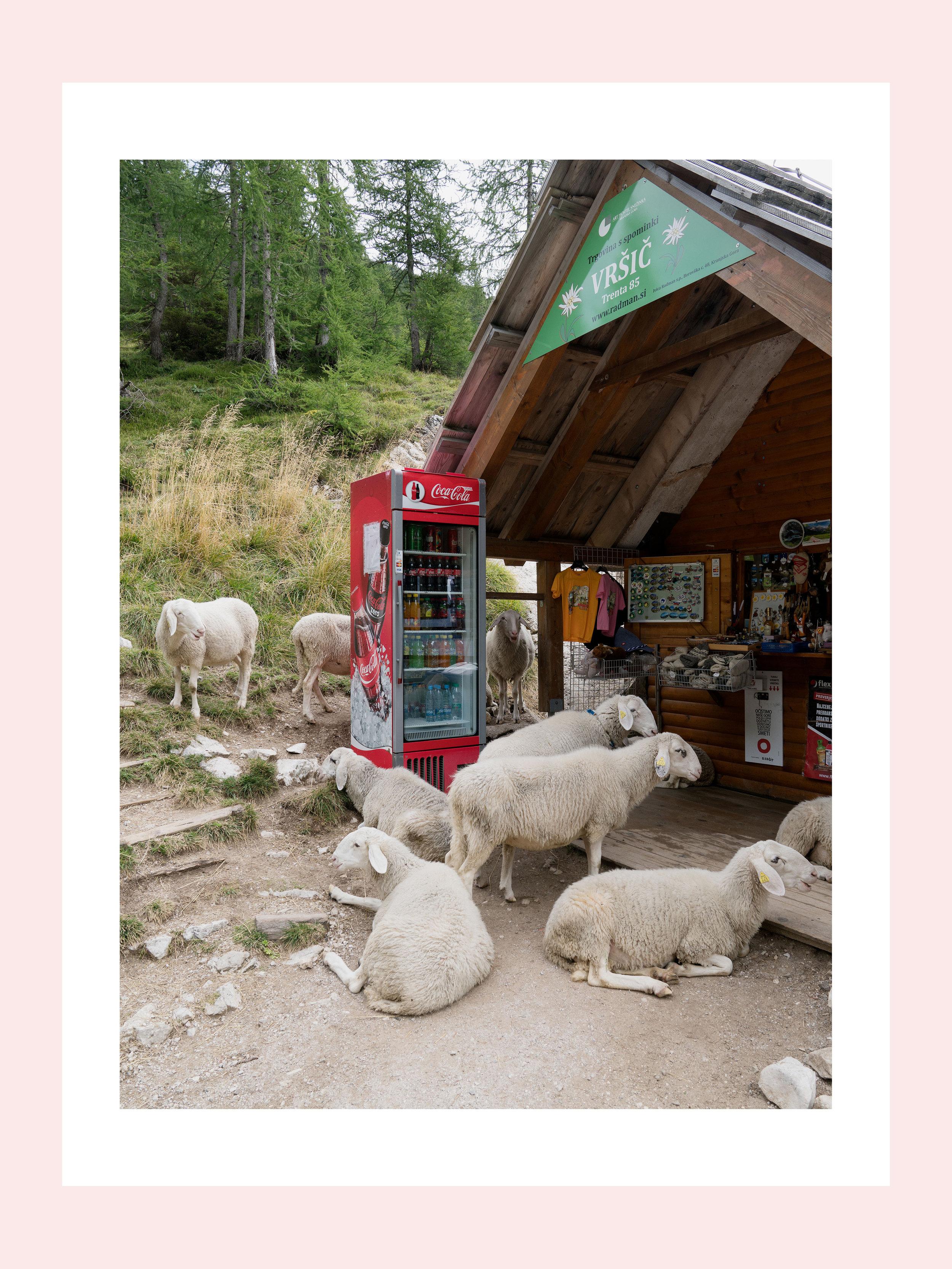 On the mountains of Slovenia shot for Mondo travel magazine.