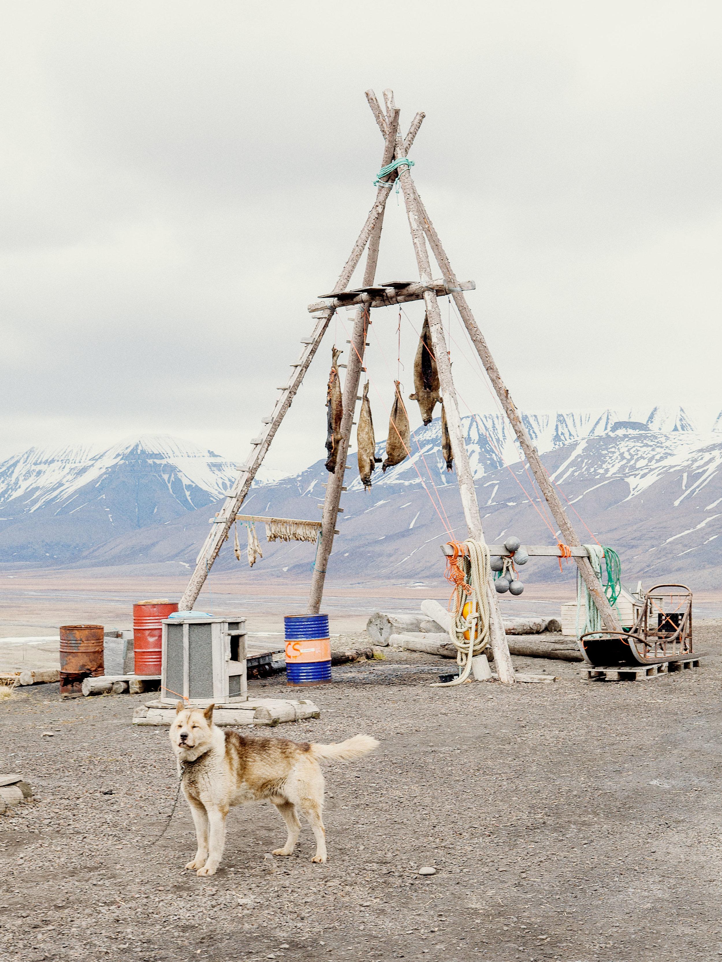 Svalbard story dor Code Magazine (NL).