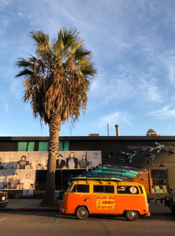 Surf School in Venice, California.