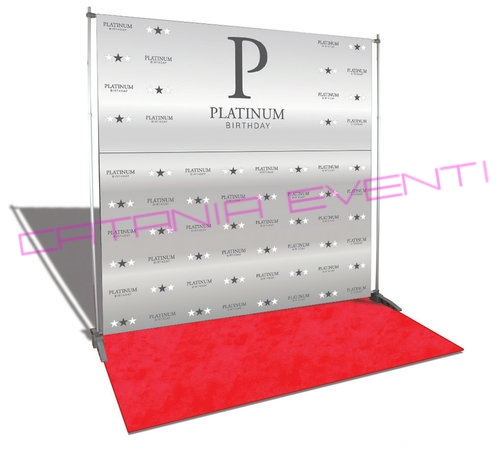 platinum-birthday-photo-backdrop-8x8.jpg