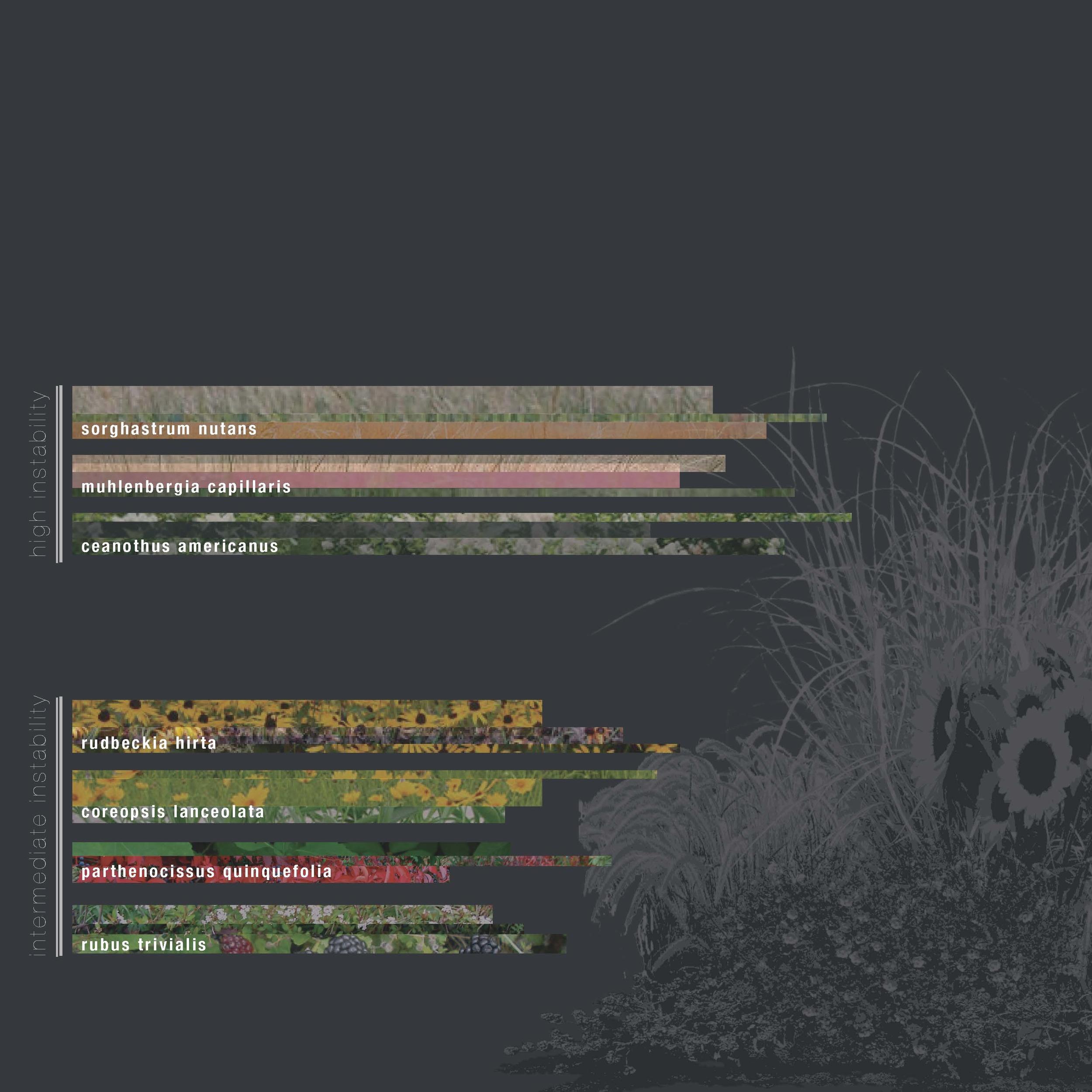 Hangartner_thesis_Page_37.jpg