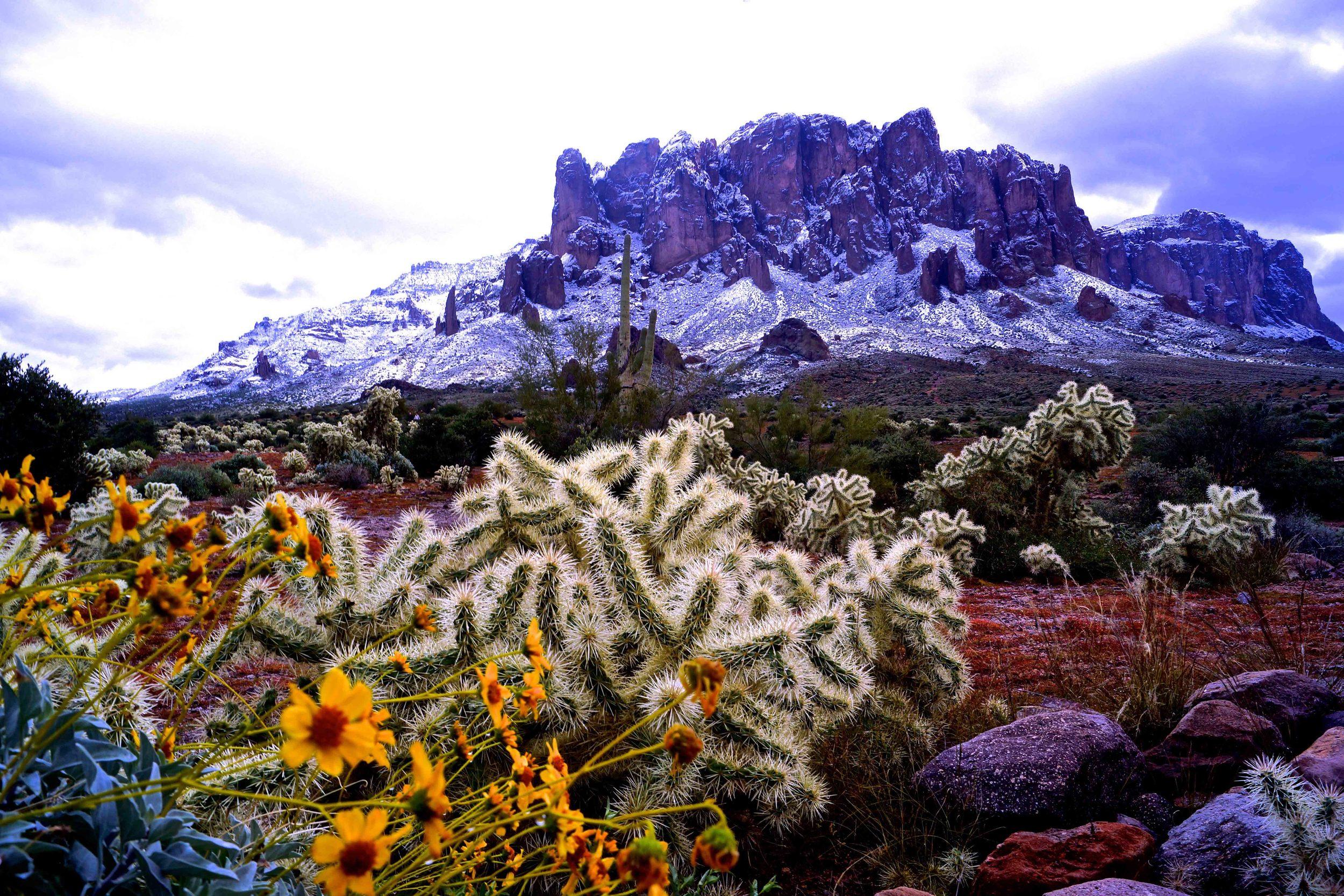 Superstition Mountains, Arizona, January 2015