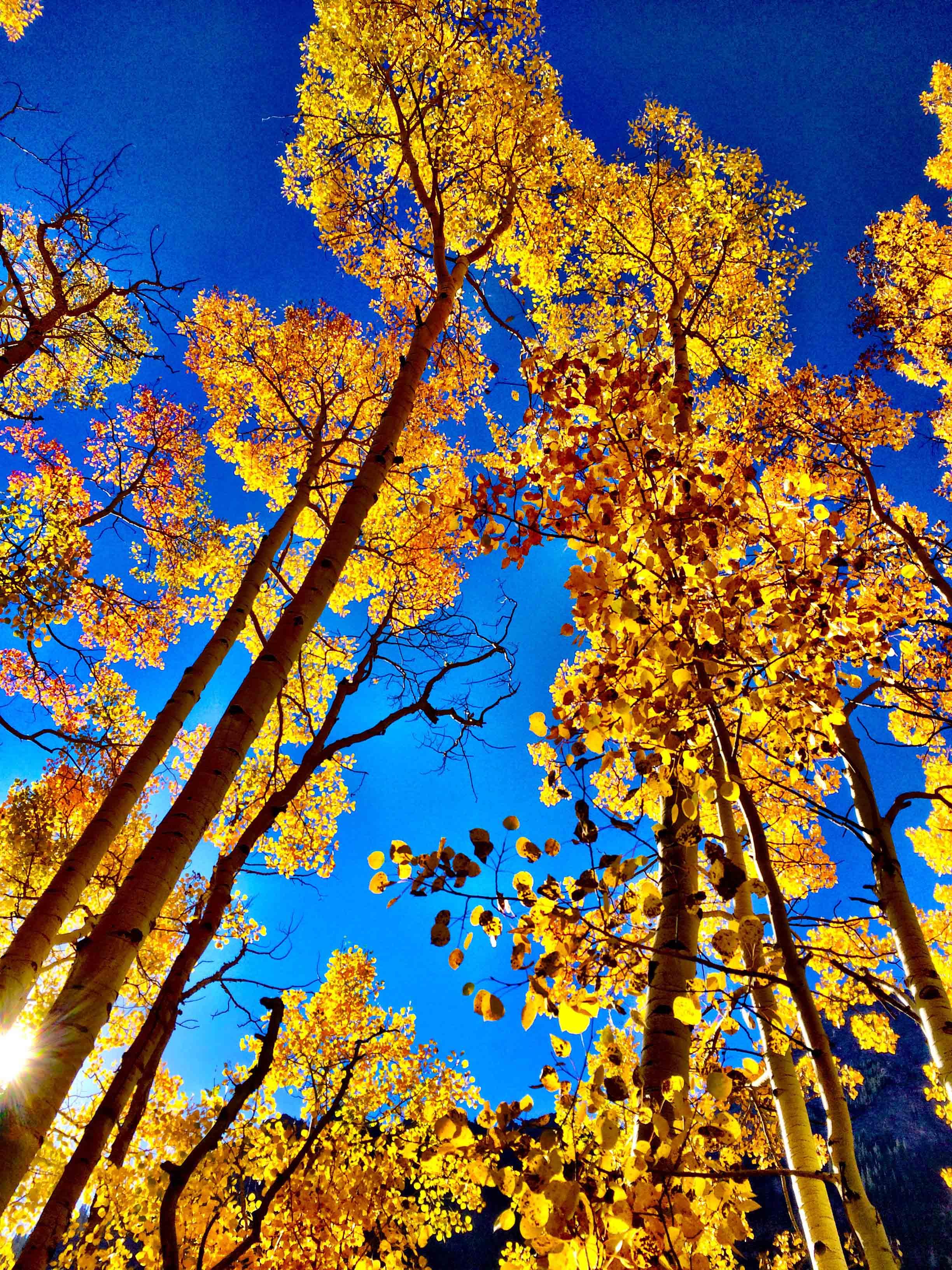 Maroon Bells, Colorado, September 2015