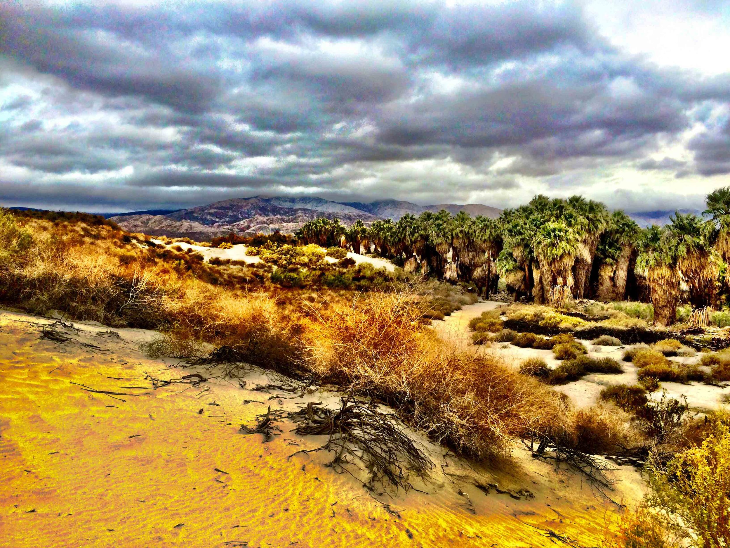 Palm Springs, California, December 2015