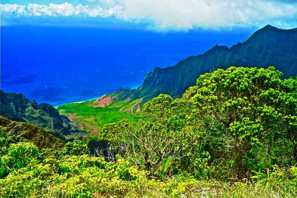 Koke'e State Park, Kauai, Hawaii July 2012