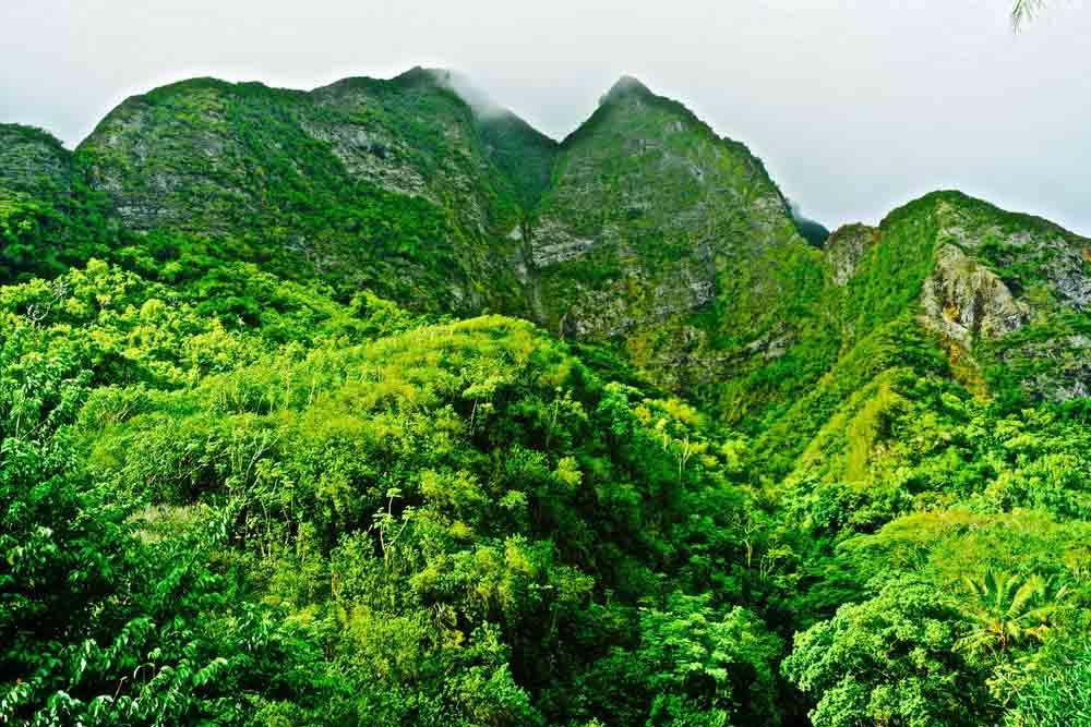 Iao Valley State Park, Maui, Hawaii July 2012