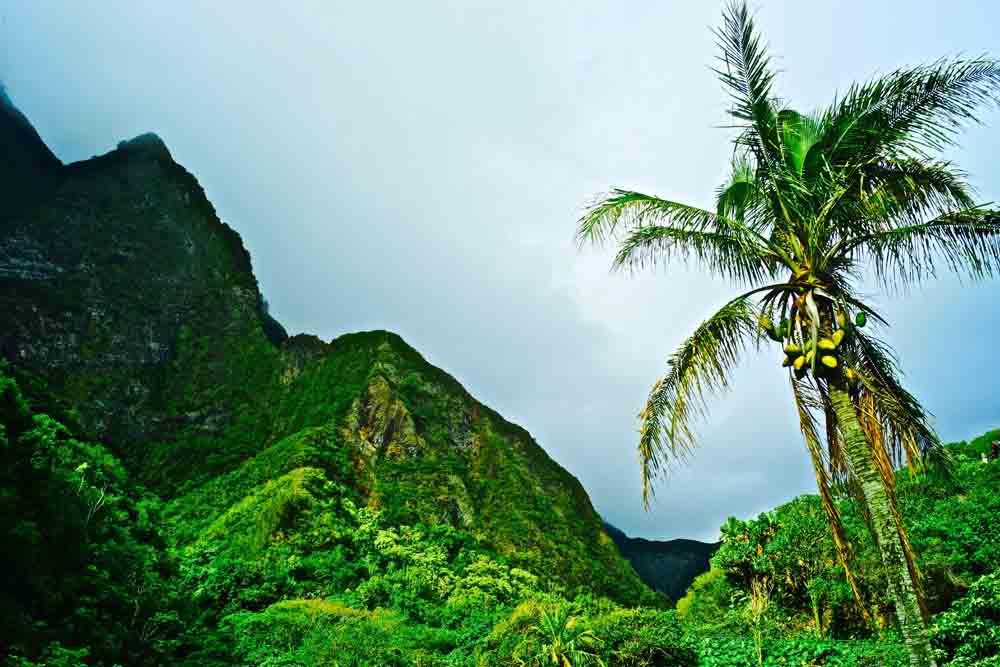 Iao Valley State Park, Maui, Hawaii, July 2012