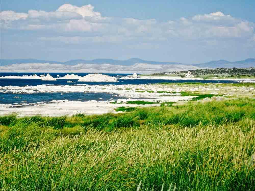 Mono Lake, California, June 2014