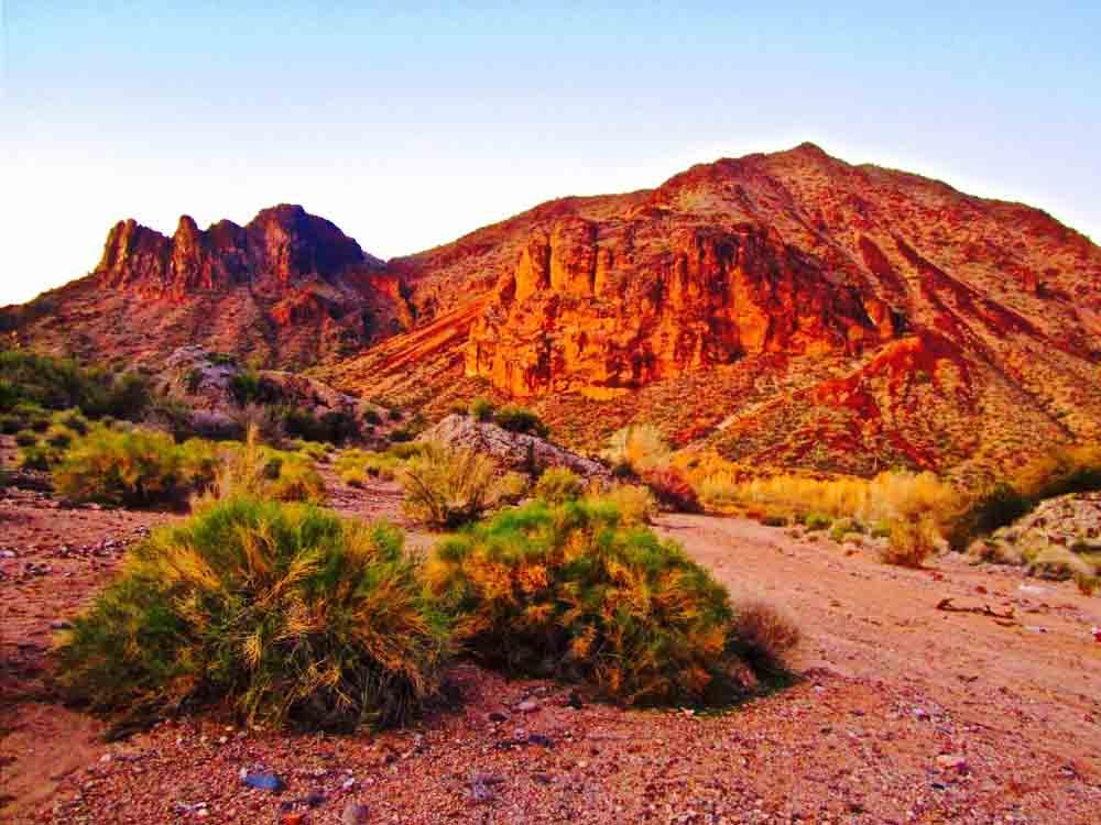 Arrastra Mountain Wilderness, Arizona, December 2011