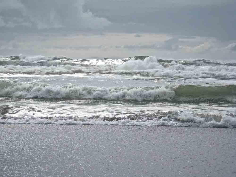 Oregon Coast, July 2008