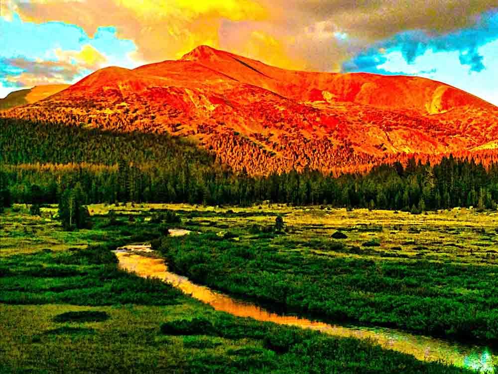 Yosemite National Park, July 2014
