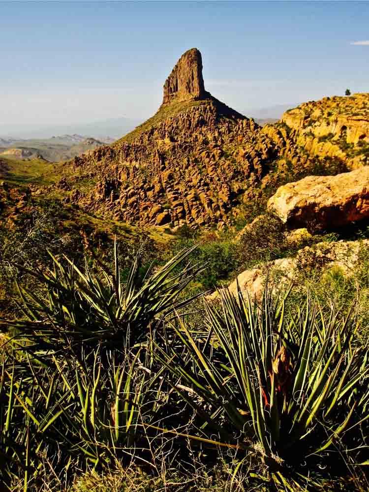 Weaver's Needle, Arizona, April 2010