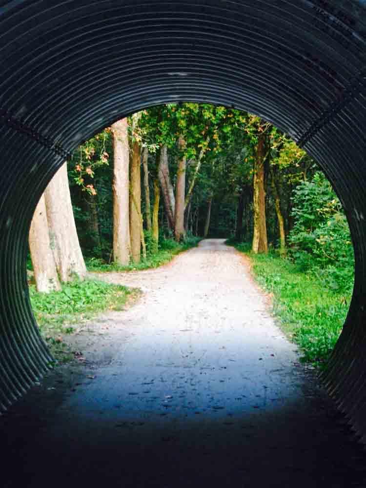 Cuyahoga National Park, Ohio, August 2008