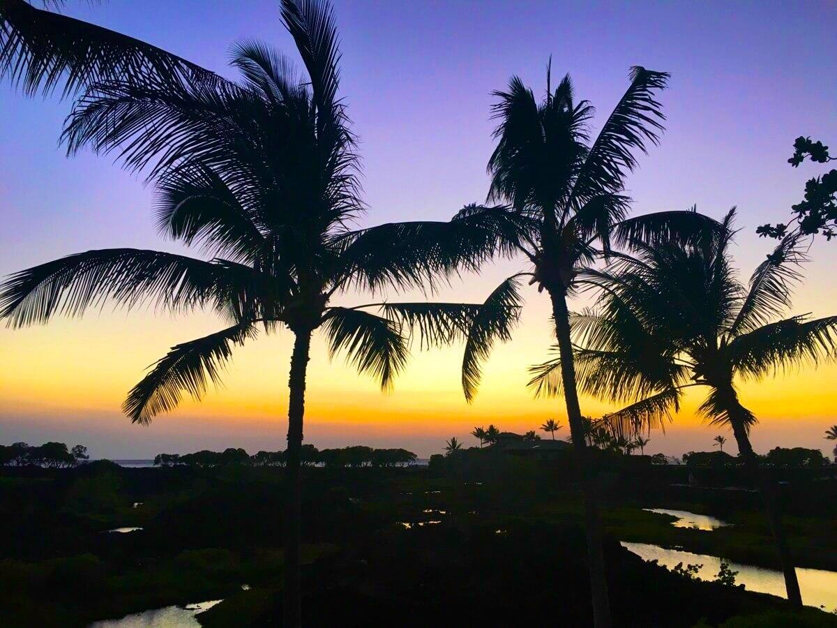 Waikoloa, Big Island, Hawaii, April 2016