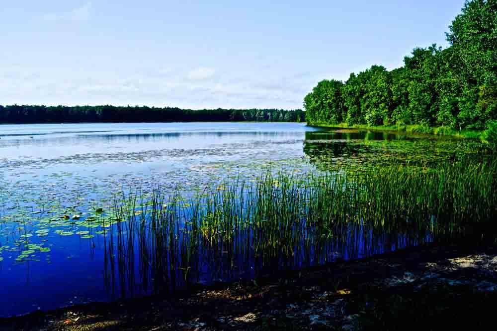 Twin Lakes, Michigan, July 2015