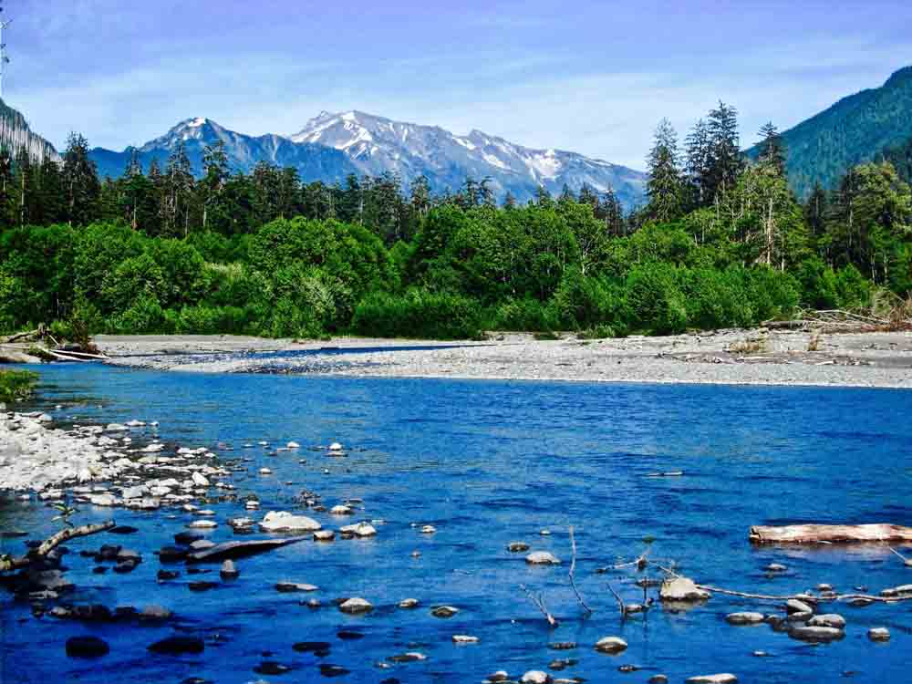 Hoh River, Olympic National Park, July 2009