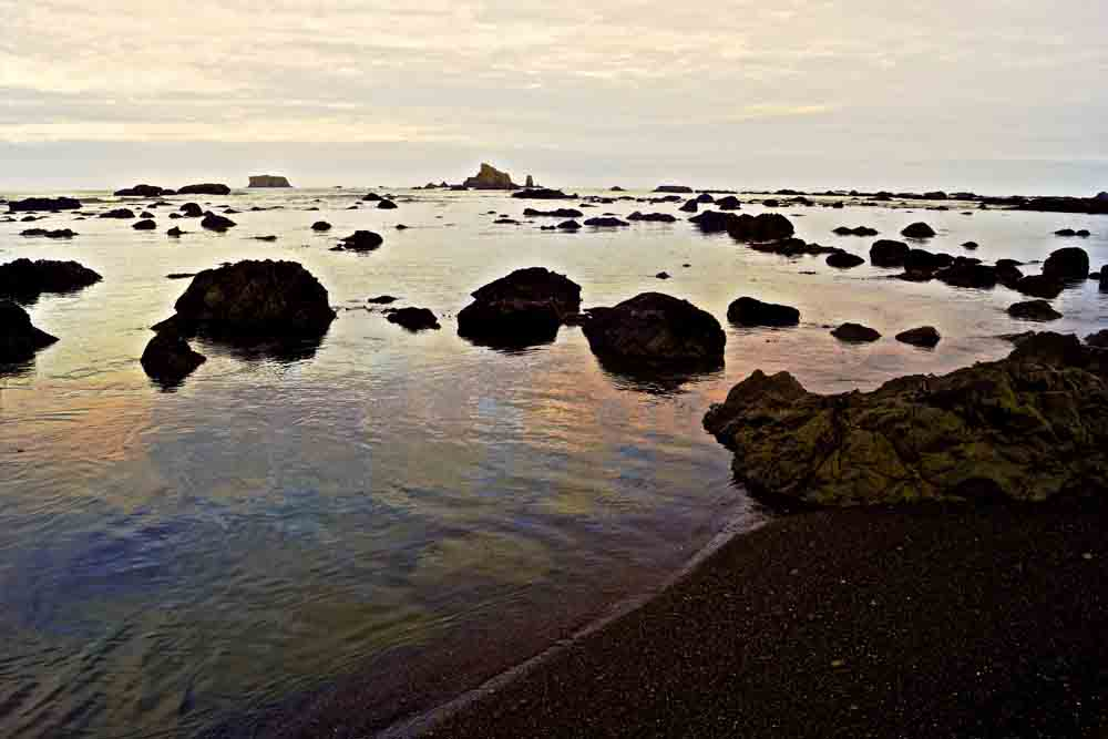 Olympic National Park, July 2014