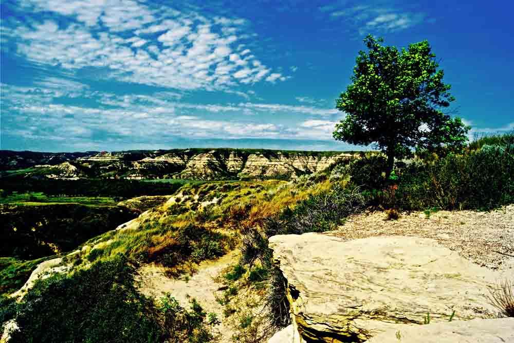 Teddy Roosevelt National Park, North Dakota, September 2014