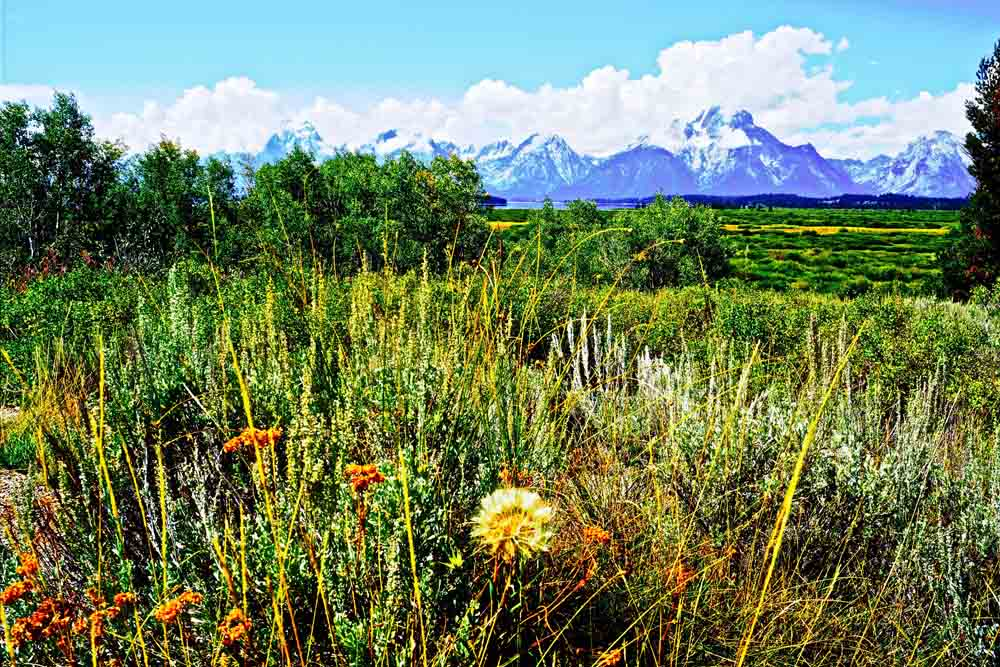 Grand Tetons National Park, Wyoming, August 2014