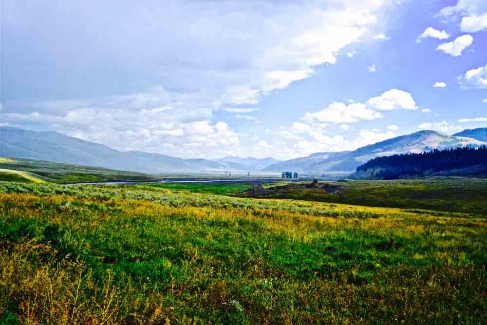 Yellowstone National Park, Wyoming, August 2014