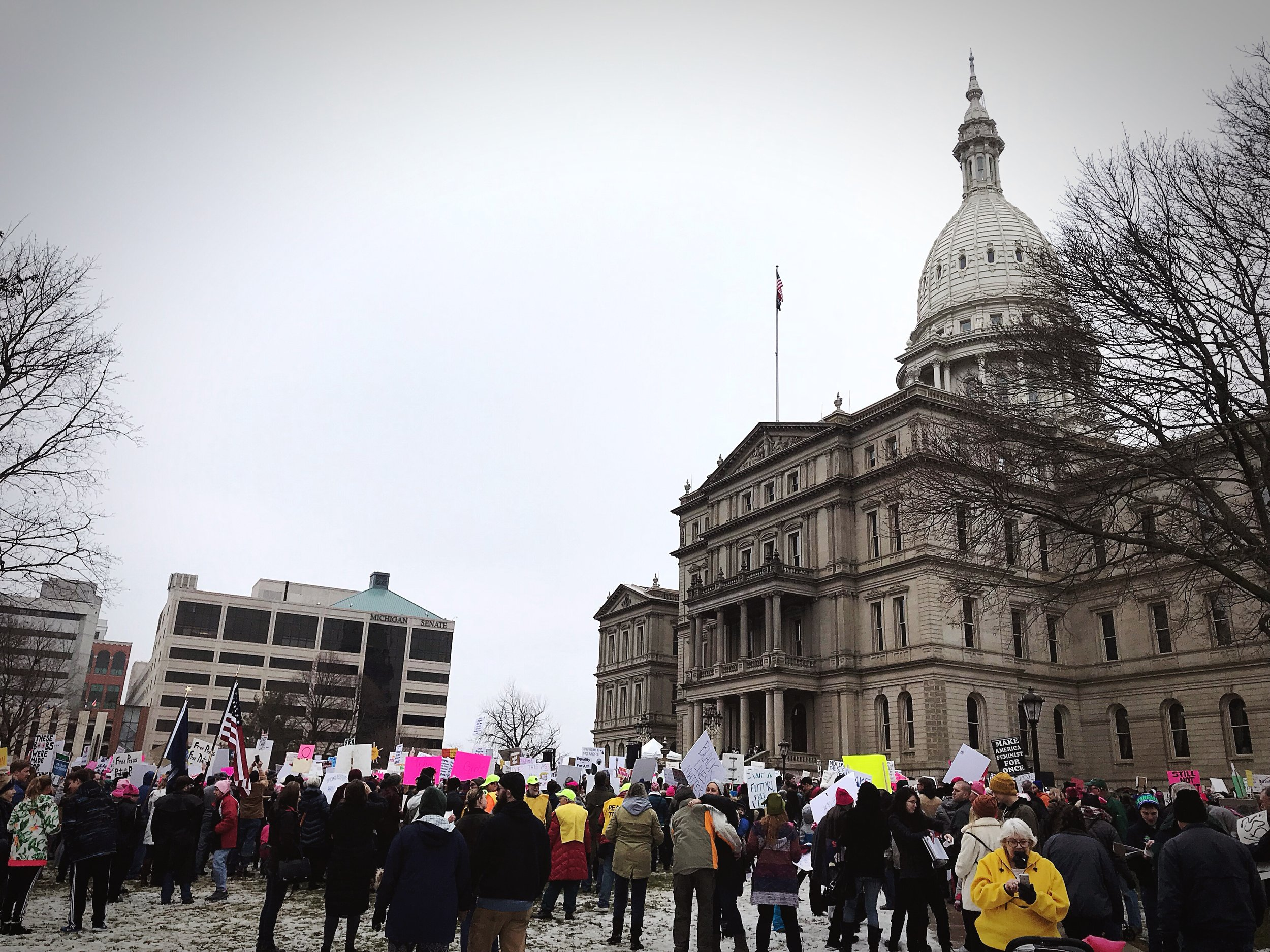 Susan J. Demas/Women's March, January 21, 2018