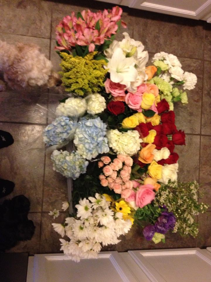 My first picture on my business page. A bucket of various flowers and my 2 happy helpers checking it out
