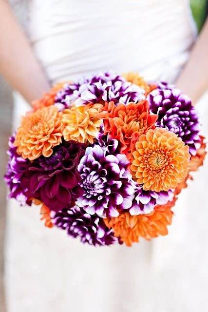 Guesses - $45 - $350    Average = $100    Actual cost - $200    Dahlias are a highly seasonal flower so their price can greatly fluctuate
