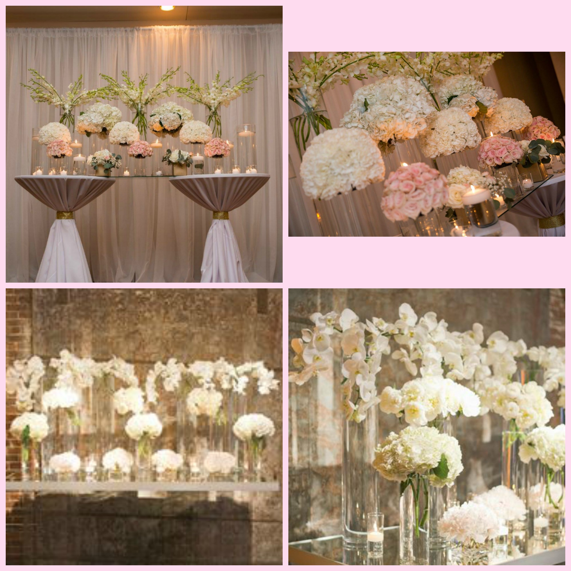Top images -  Giraffe Photography , Bottom images - pinterest photos from bride