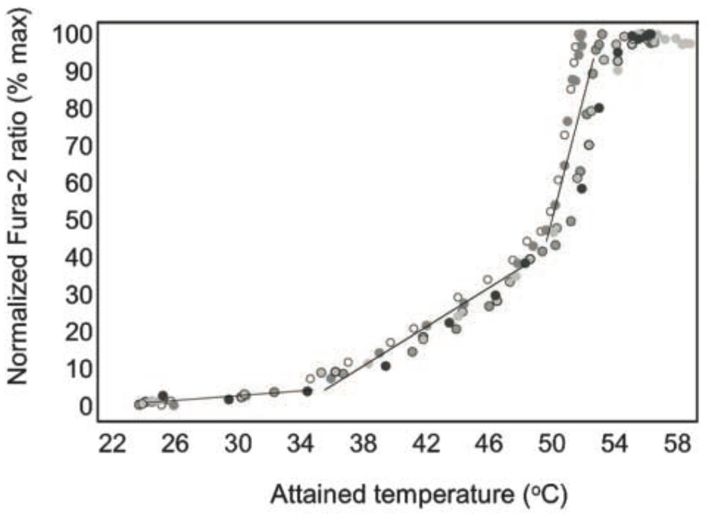 [8] TRPV2 in mast cells. Calcium flux with temperature.