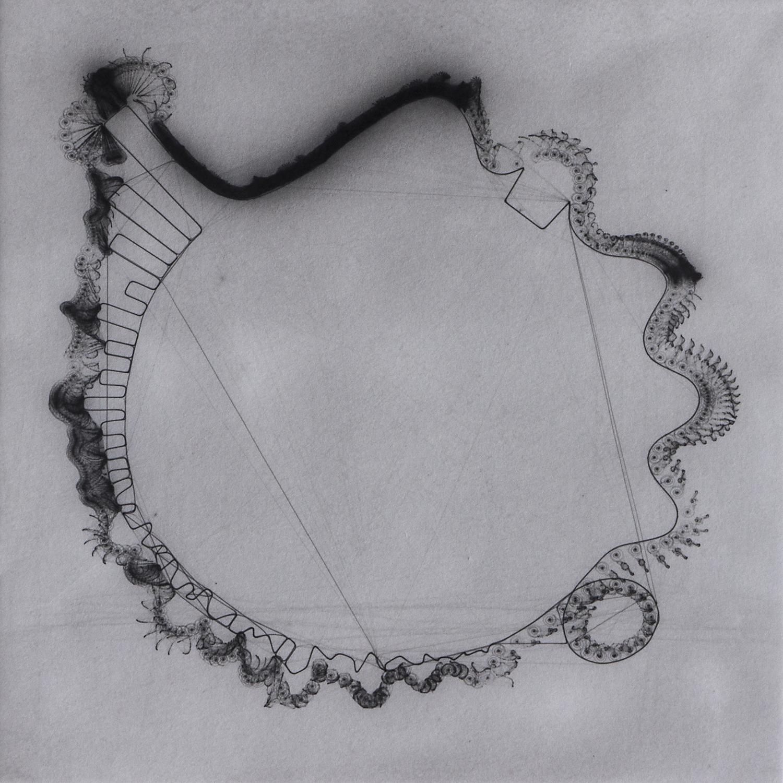 SNAIL TRAIL  cycle , palladium light drawing, 2016