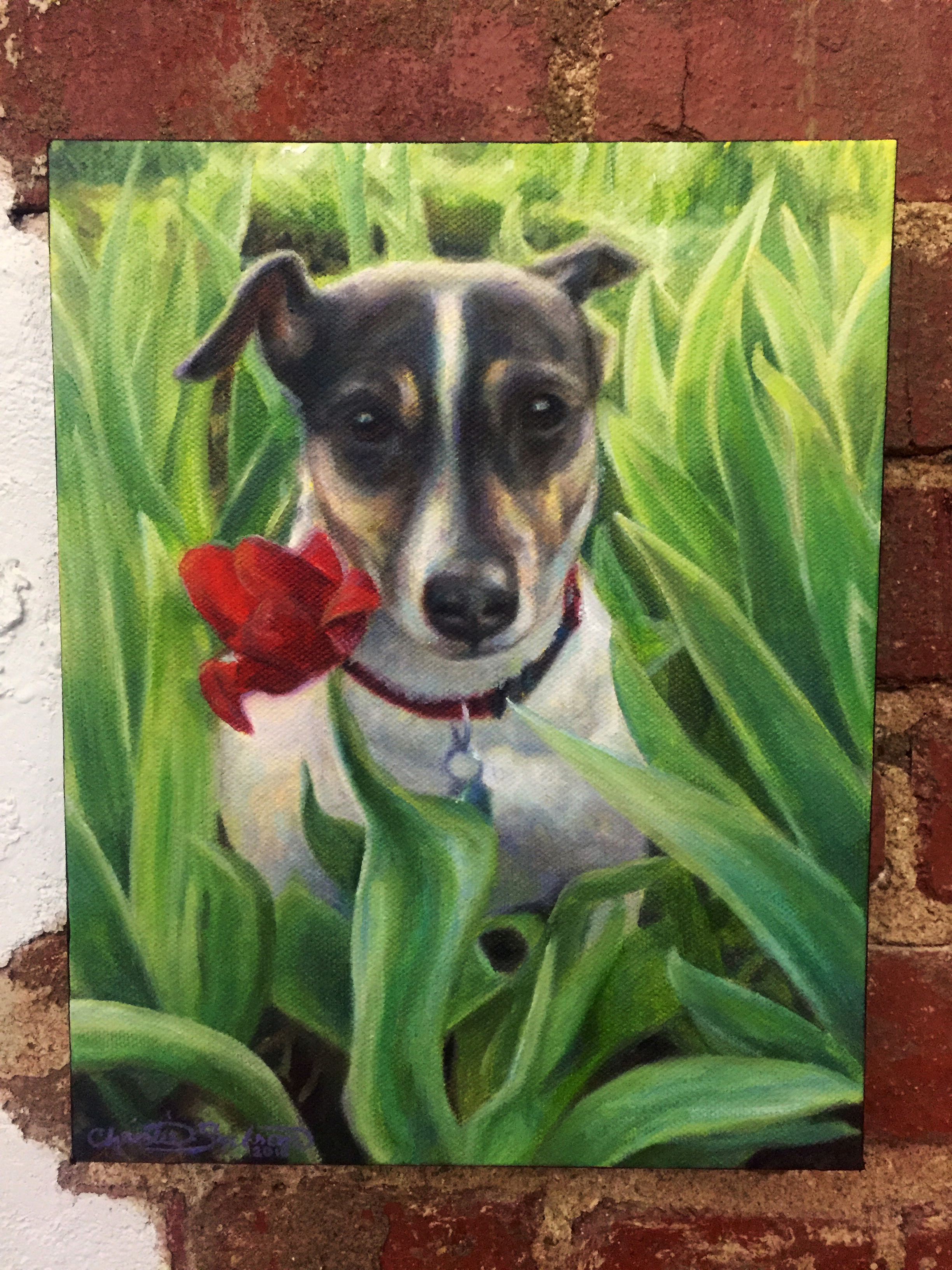 Subie_Dog Portrait_8x10_Christie Snelson.jpg