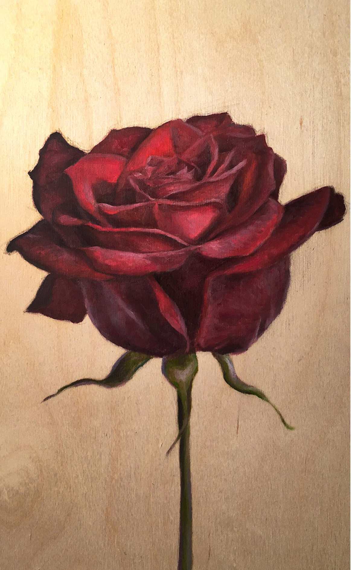 Red Rose_Christie Snelson.jpg