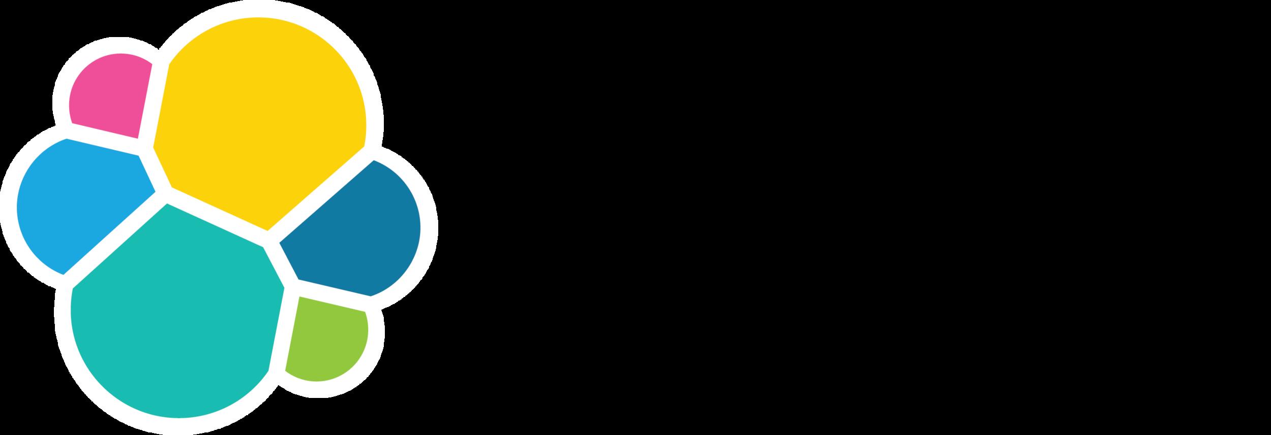 elastic-logo-H-full color.png