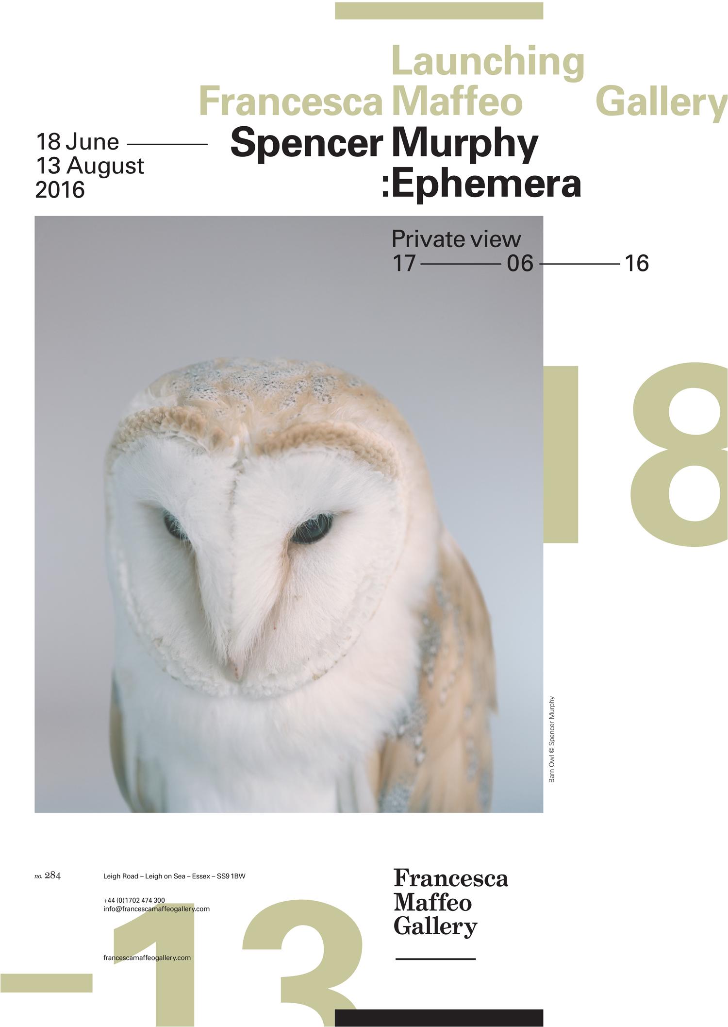 Spencer Murphy | Ephemera     Press Release      Print Sales